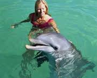 Swin with a Dolphin